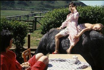 linda mccartney 0411 10 de1 Linda McCartney  LIFE IN PHOTOGRAPHS ecco le foto selezionate da Paul
