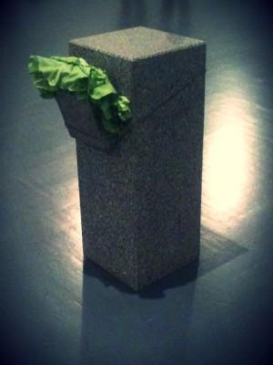 foto2 300x400 ARTE POVERA   un percorso dal 1967 al 2011 in Triennale