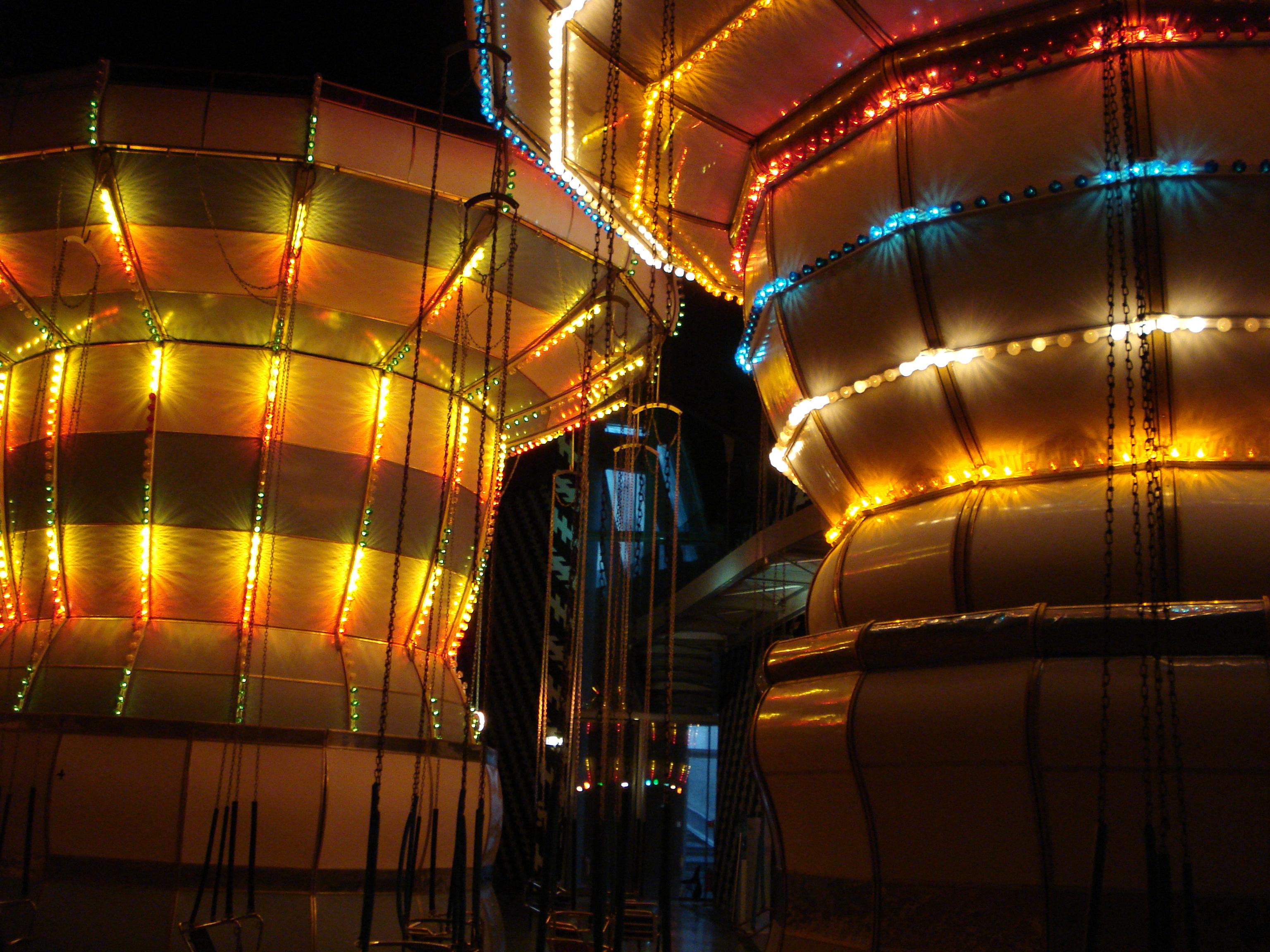 DSC01692 ENEL CONTEMPORANEA 2011   Carsten Höller al Macro