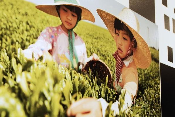 DSC0265 2 597x400 JAPAN 日本   attimi di vita divenuti immagine