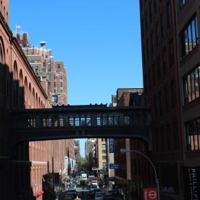 IMG 7790 290x290 NEW YORK   some random pics