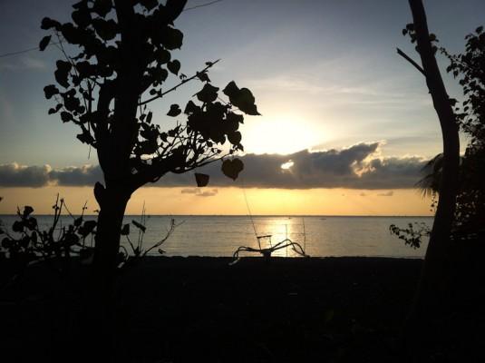 IMG 4859 535x400 APNEISTA   Yoga e Free Diving a Bali