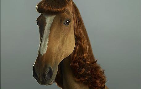 horse hairExtensio 1381051c ITSALLABOUTHAIR