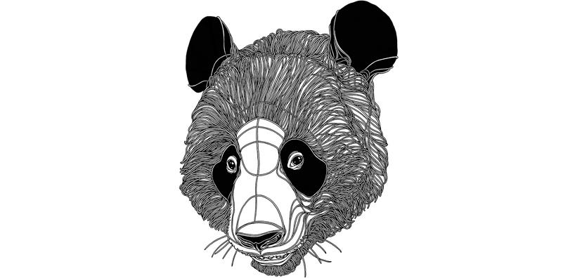 3 panda PICTOPLASMA   Figure che parlano senza voce