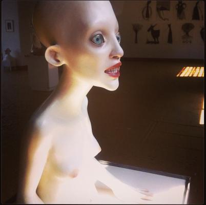 Immagine 3 402x400 LOST SHELF    l'evoluzione dell'uomo secondo Monika Grycko