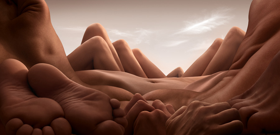 Shin Knee Valley CARL WARNER   bodyscapes