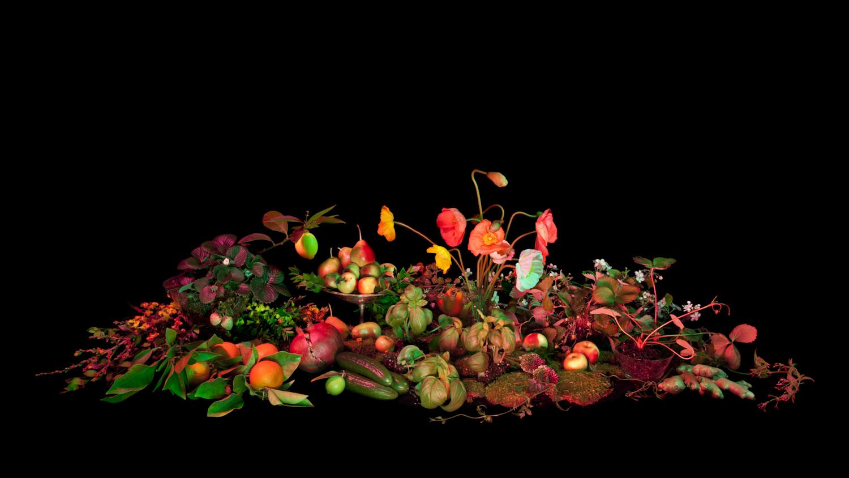 AmeliaBauer BookOfShadows 10 THIS LAND   lignoto scattato da Amelia Bauer