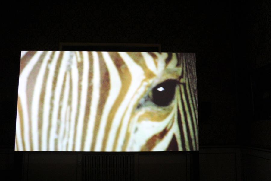 Allora Calzadilla Fault Lines Fondazione Trussardi Palazzo Cusani Milano Installation view Ph Francesca Verga 12 FAULT LINES   Allora & Calzadilla @FondTrussardi