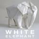 WHITE ELEPHANT- Sipho Mabona