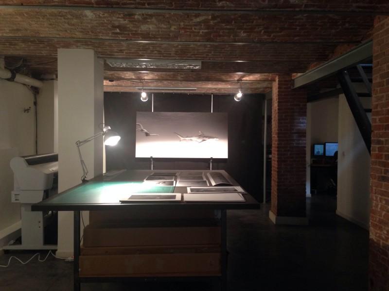 photo43 e1400692644892 PARCOURS DARTISTES ST GILLES   Atelier aperti a Bruxelles