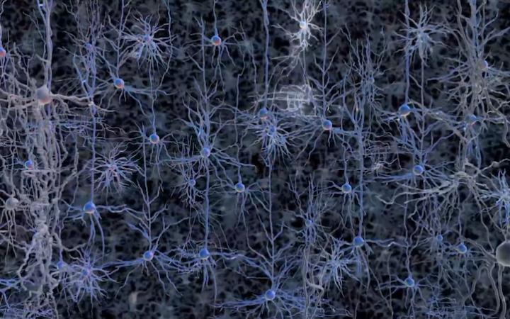 HUMAN BRAIN PROJECT - simulare il cervello umano 1