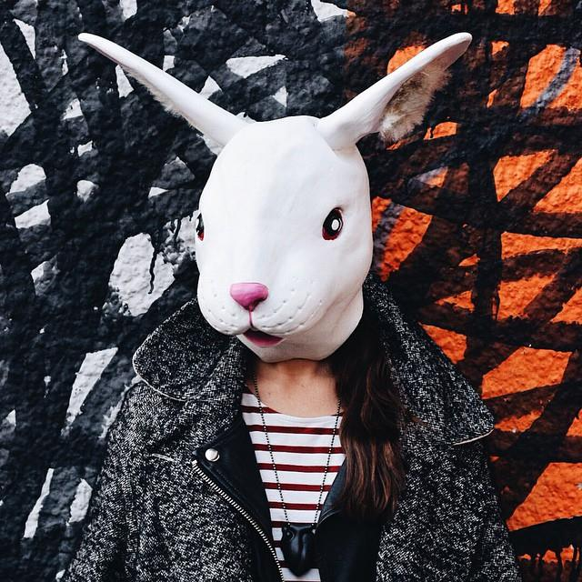 10411196 345794408938956 4574931134926374867 n THE RABBIT PROJECT