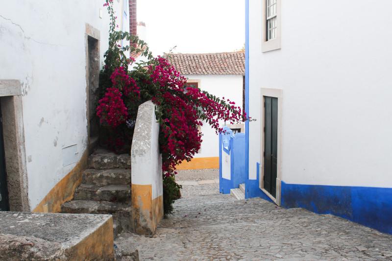 IMG 8938 e1441315080345 Portogallo del nord