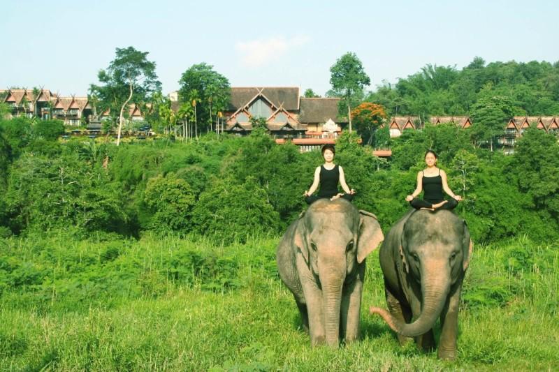 Anantra Golden Triangle Thailandia Yoga con elefanti e1445597100322 10 HOTEL INCREDIBILI