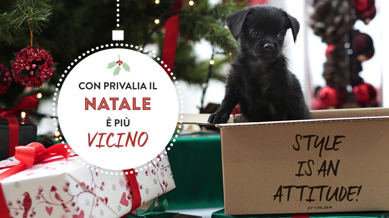Con Privalia il Natale è più.. vicino e1447671699860 XMAS IS COMING