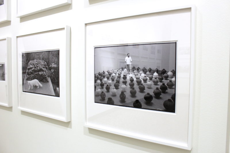 IMG 1074 e1480500284330 Around Ai Weiwei: Photographs 1983 2016
