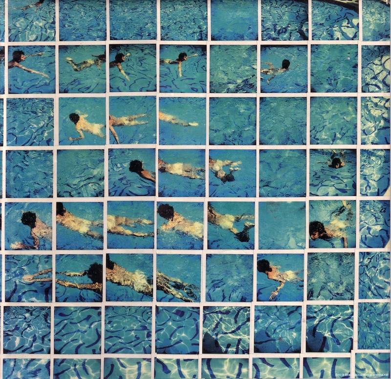 Gregory Swimming DAVID HOCKNEY