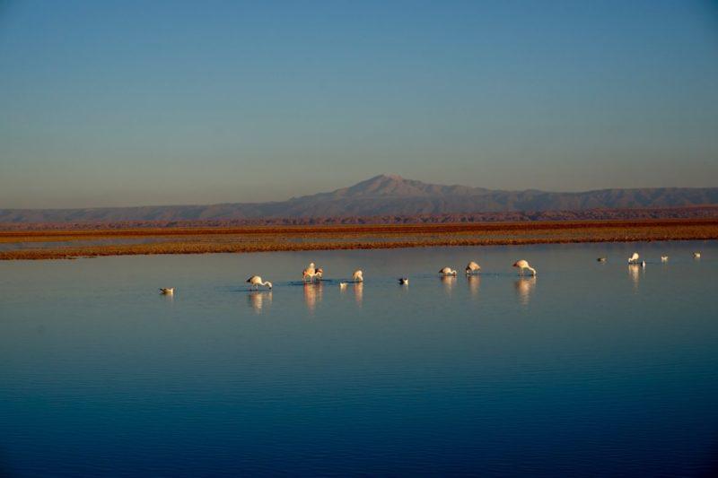 image00002 1 e1510570509145 San Pedro di Atacama