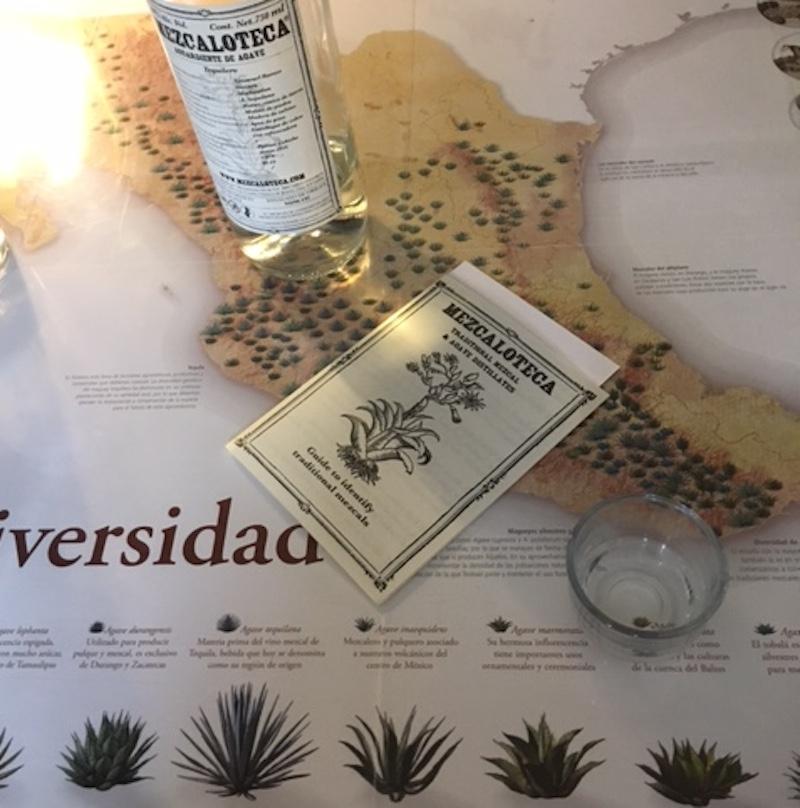 IMG 9179 Oaxaca City