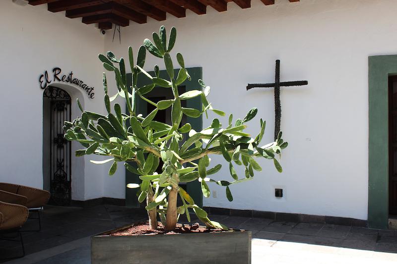 casa oaxaca restaurante Oaxaca City