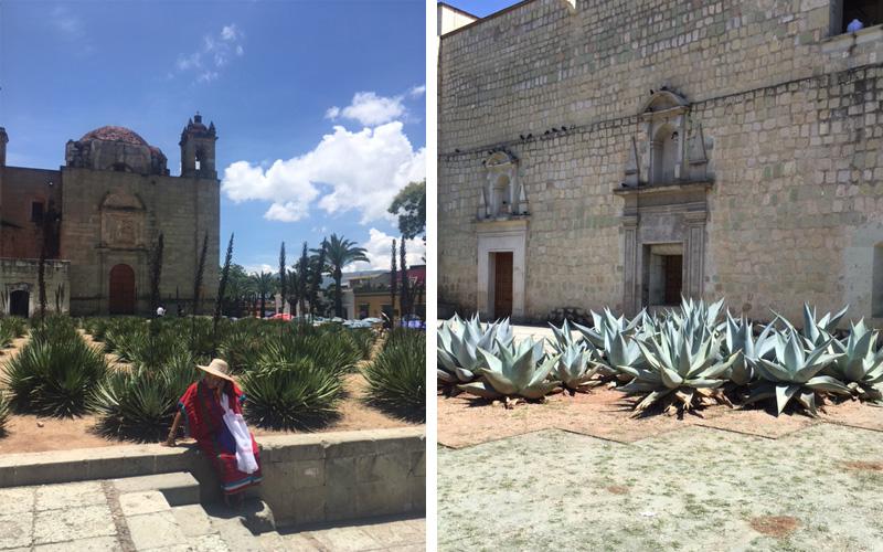 oaxaca1 Oaxaca City