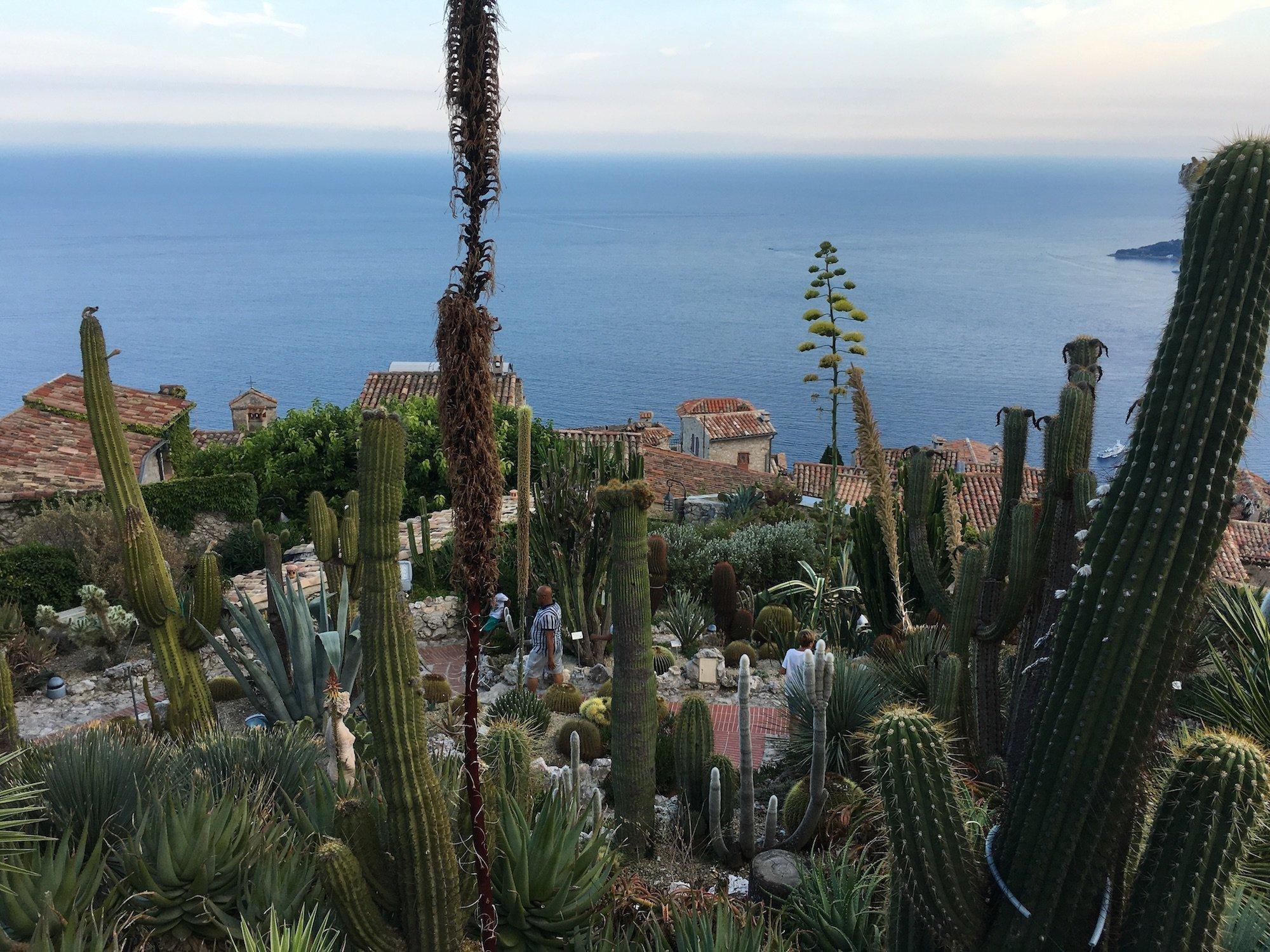 IMG 6806 Weekend lungo a Nizza