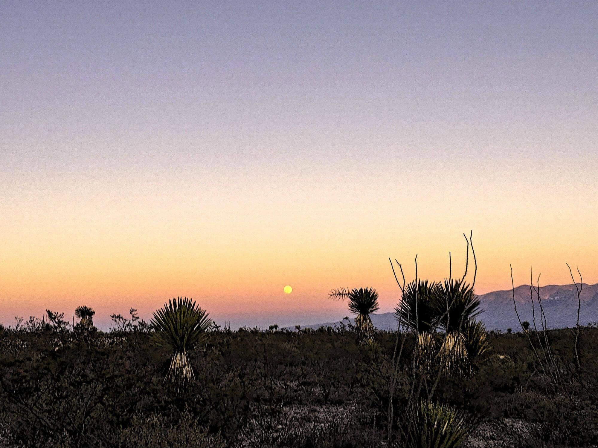 Desierto Wirikuta  VAMOS À MEXICO