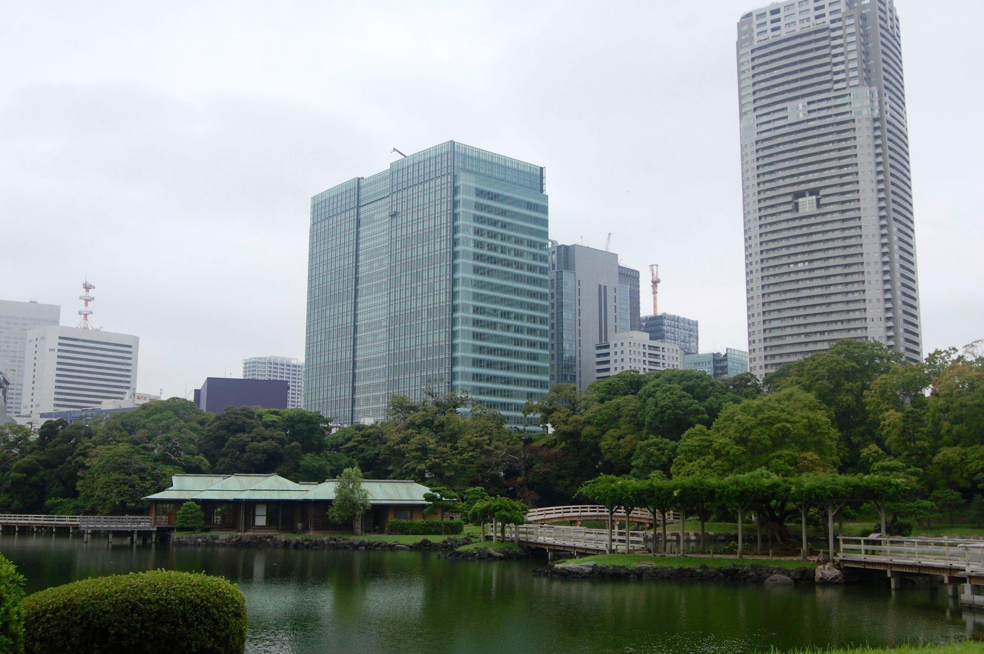 TOKYO PARCO 1 VIAGGIO A TOKYO