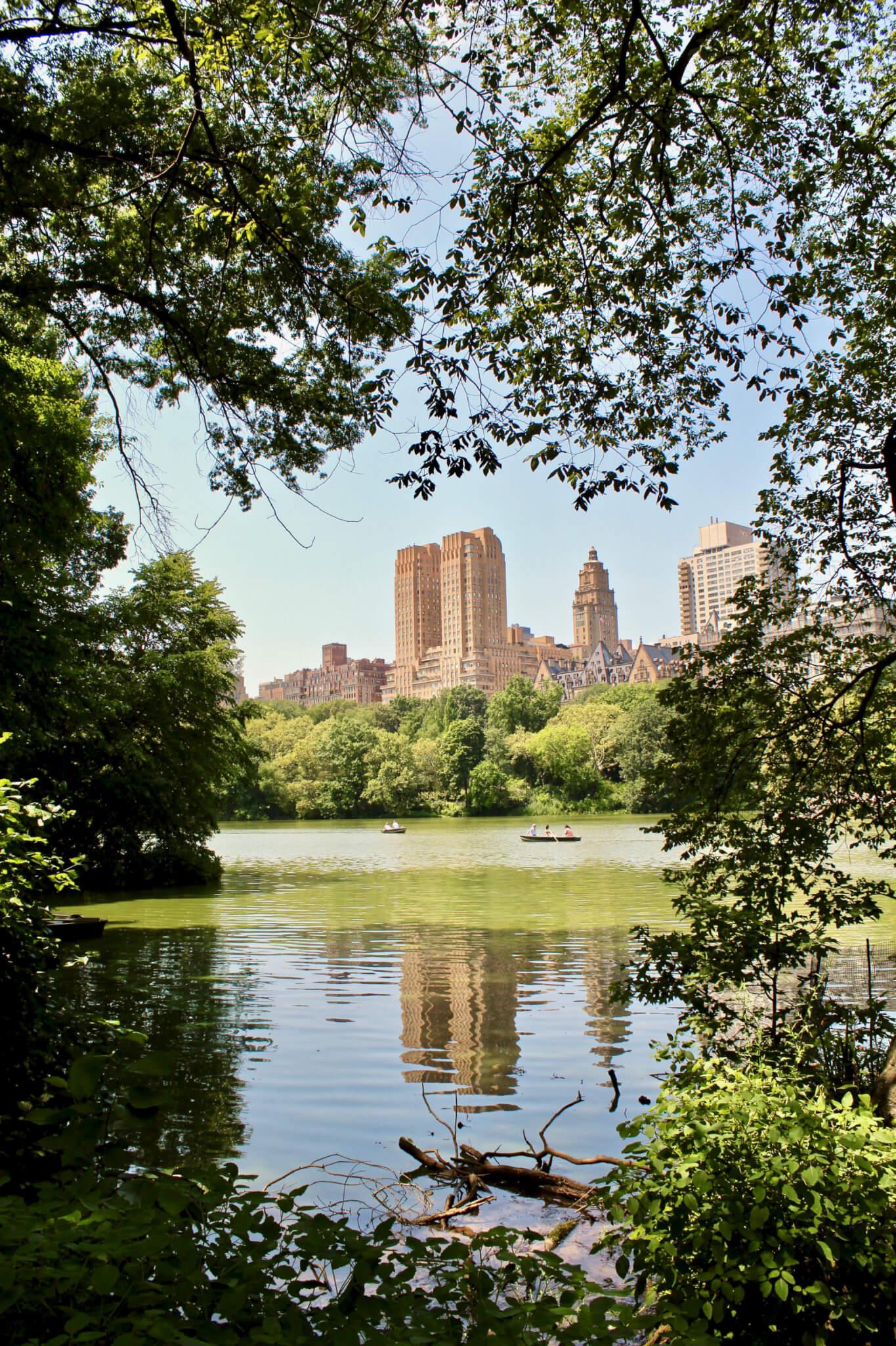 central park ny LA GUIDA DI NEW YORK PER ZONE