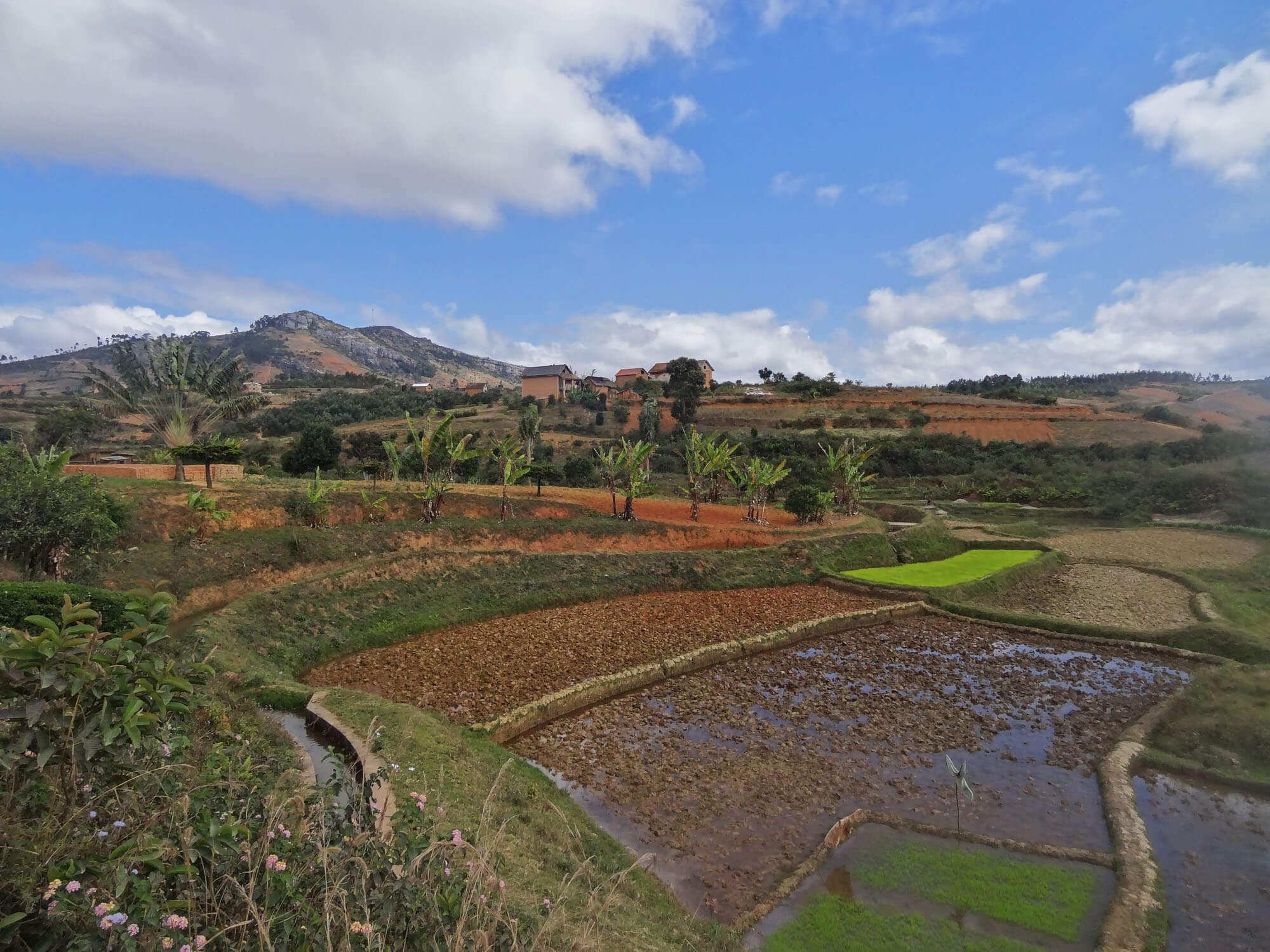 Mada016 VIAGGIO IN MADAGASCAR