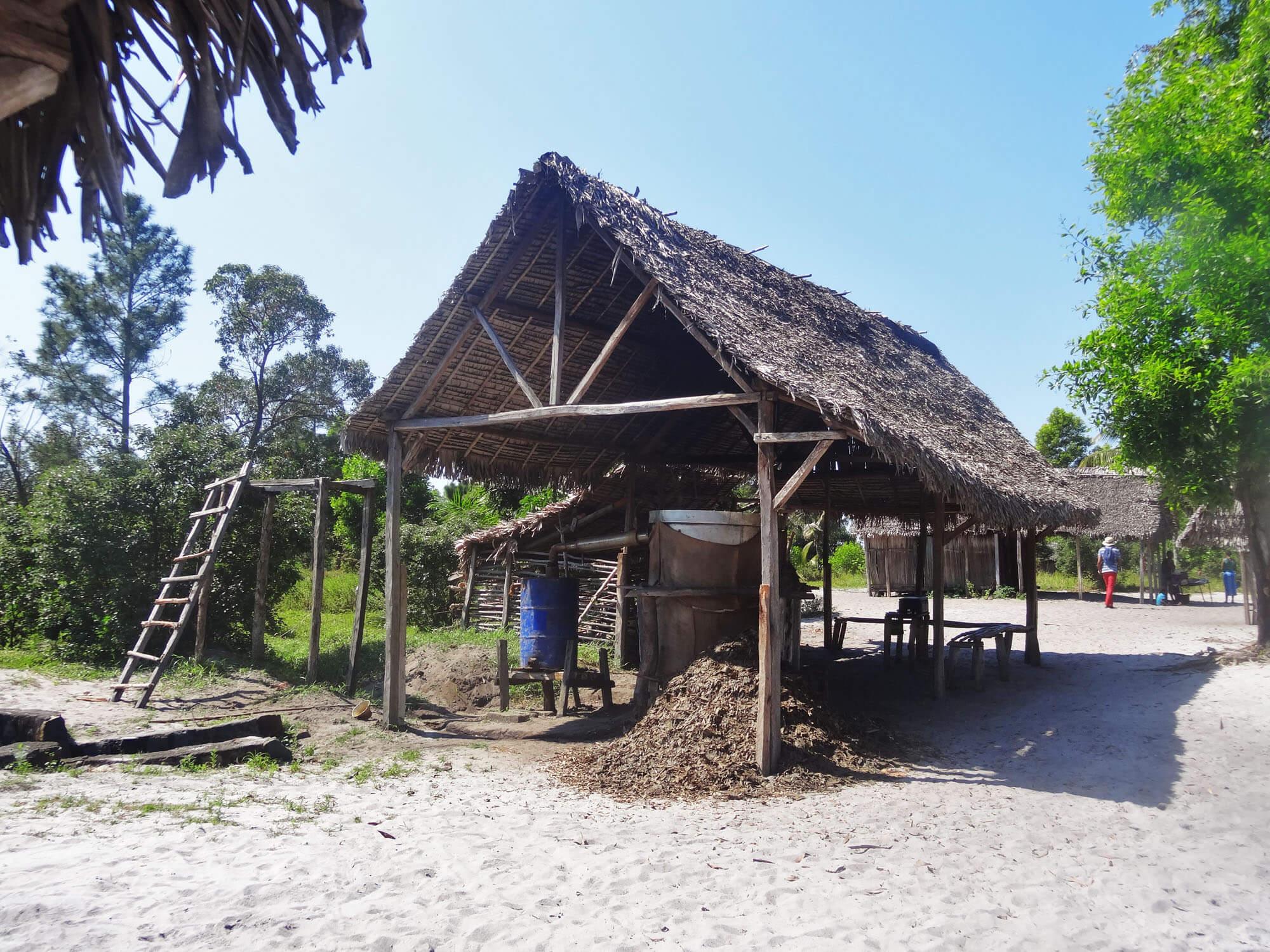 Mada027 VIAGGIO IN MADAGASCAR