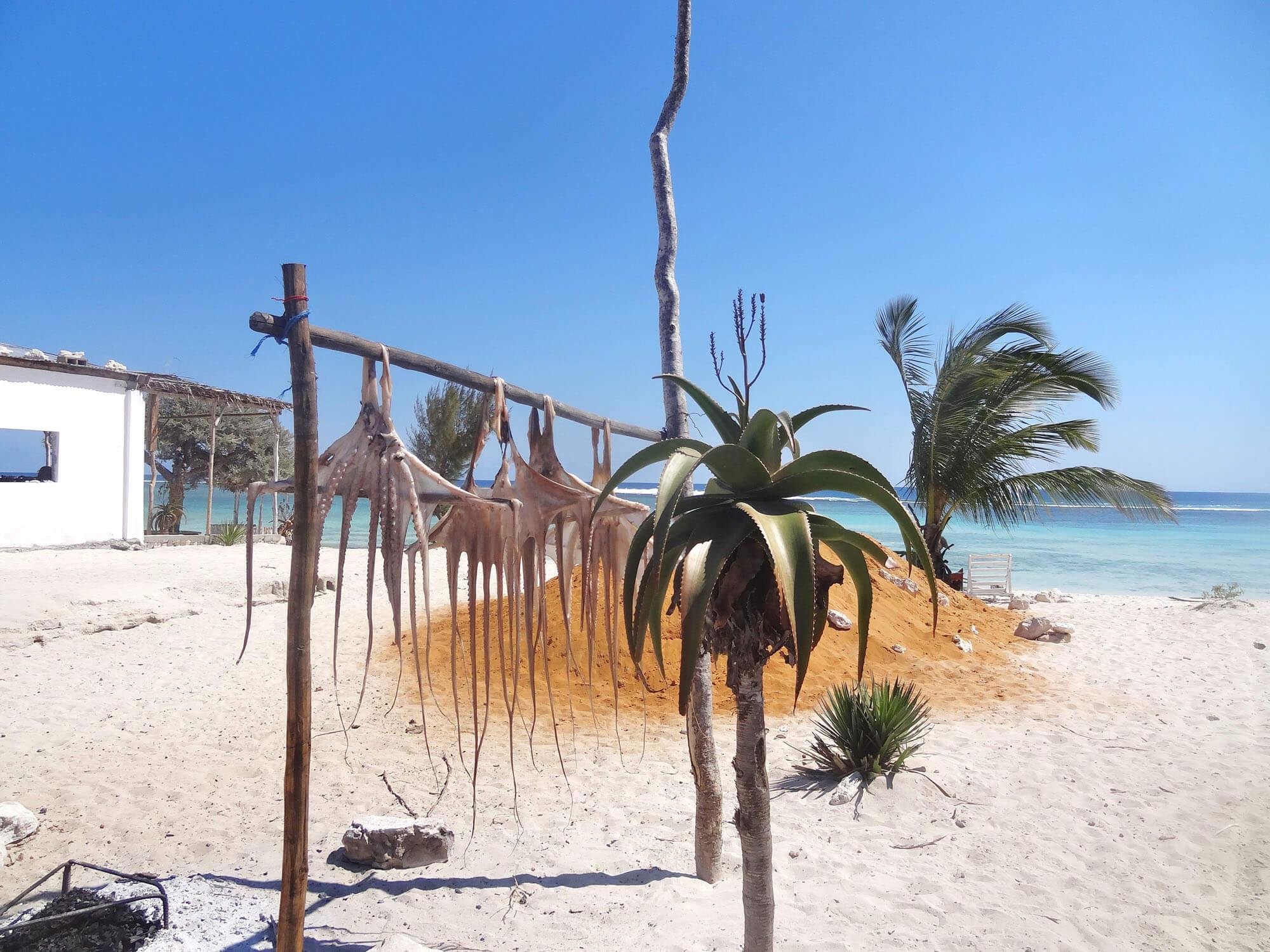 Mada045 VIAGGIO IN MADAGASCAR