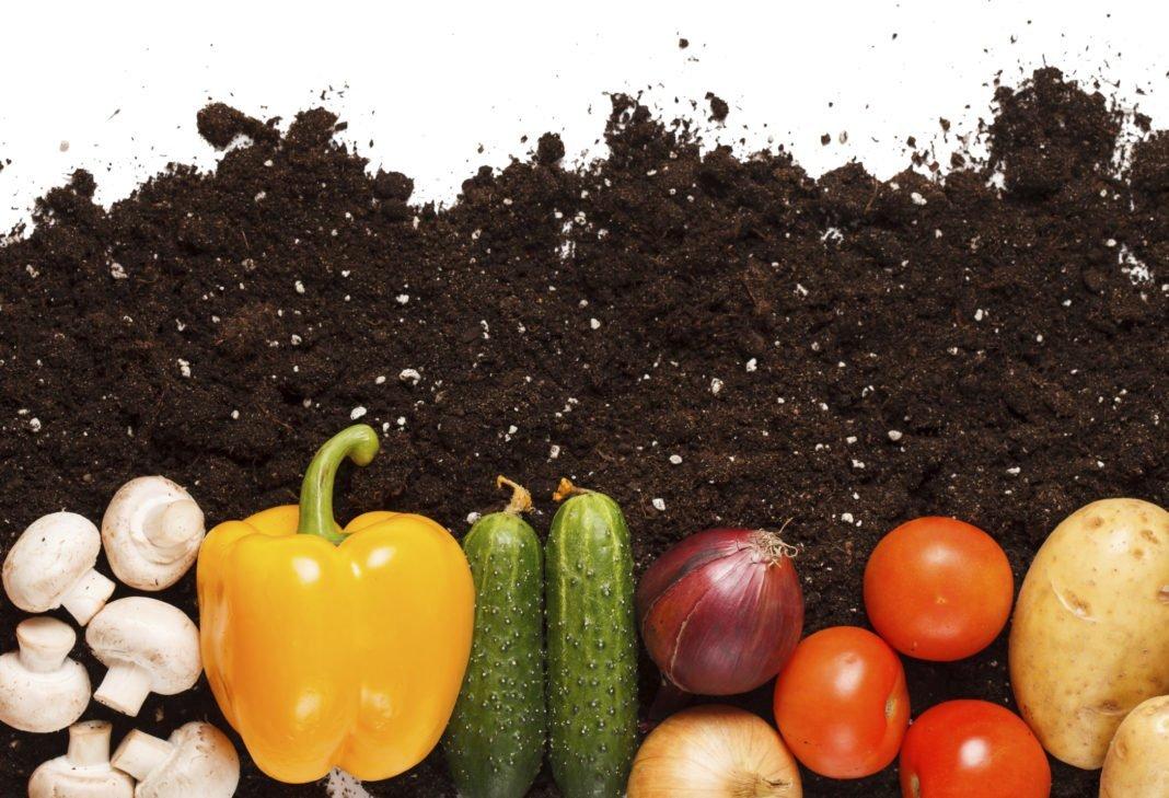 Bio Food 1068x729 LA RIVOLUZIONE DELLA SPESA