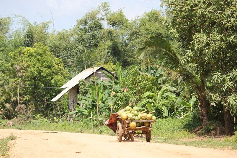 Cambogia KdolLeu 03 IN VIAGGIO CON LE PAROLE