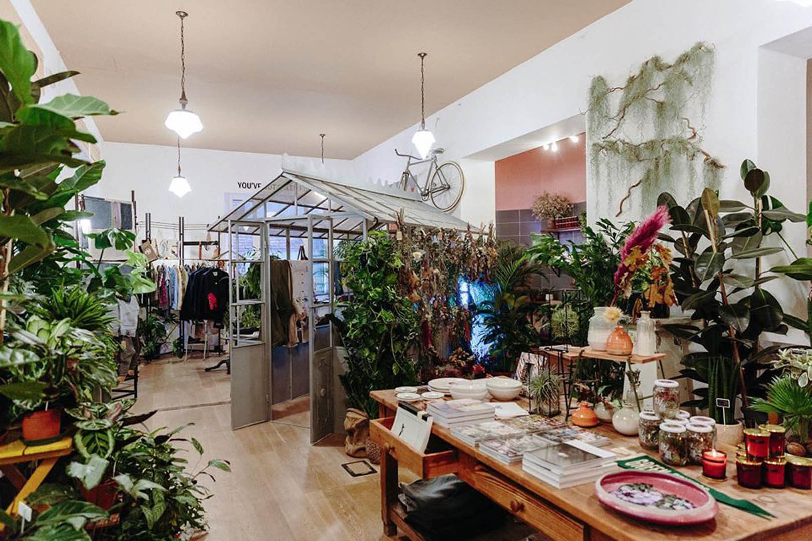 Le migliori idee regalo per la Festa della Donna GreenFingersMarket I MIGLIORI NEGOZI DI PIANTE A MILANO