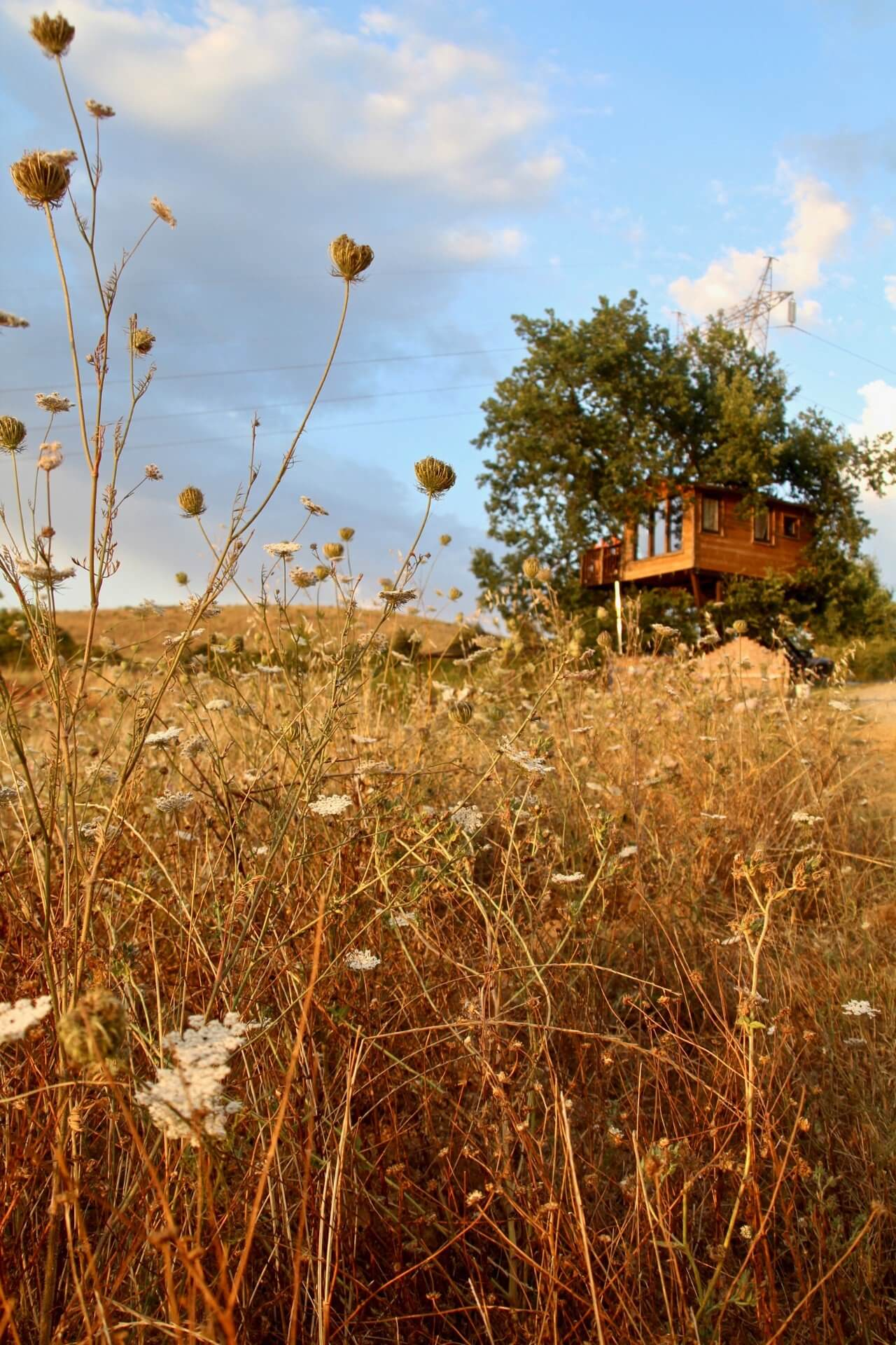 GLAMPING IL SOLE 6 PASSIONE GLAMPING