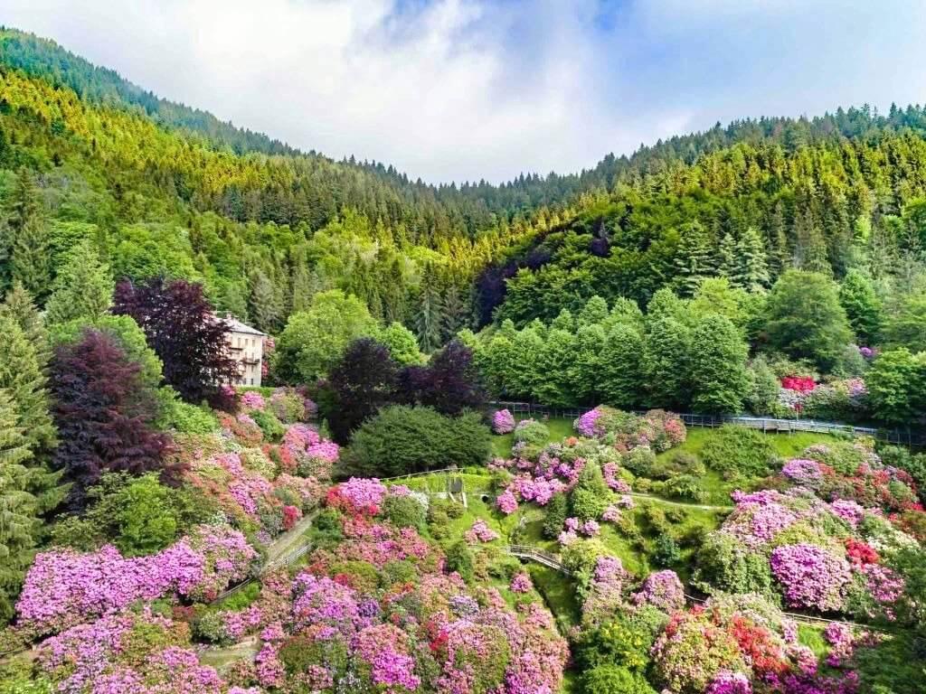 fioriture oasizegna 1s OASI ZEGNA